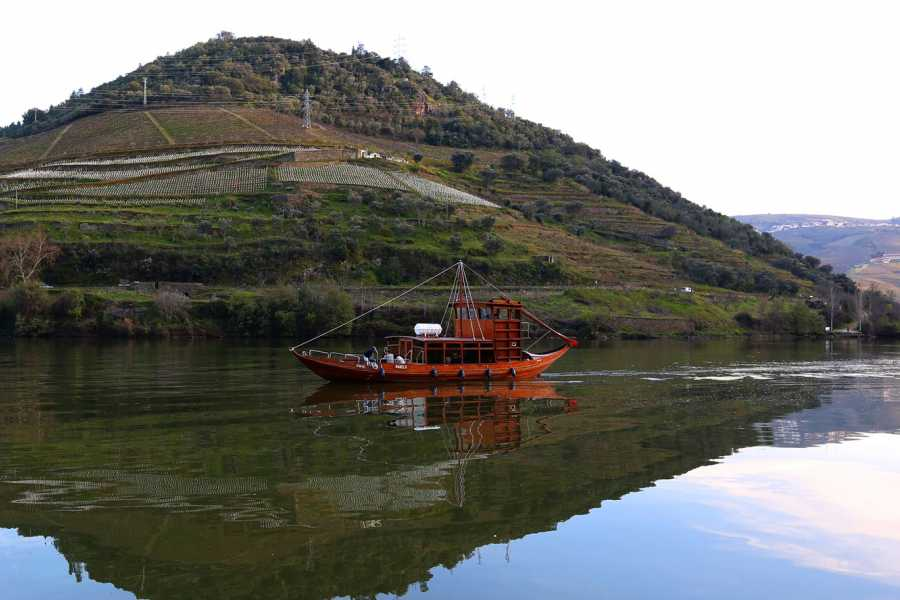 Gerês Holidays DOURO TOUR Full-Day