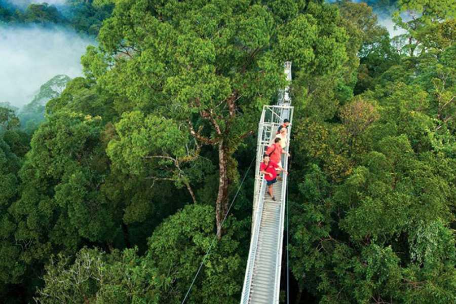 Tour Guanacaste Arenal Hanging Bridges Tour