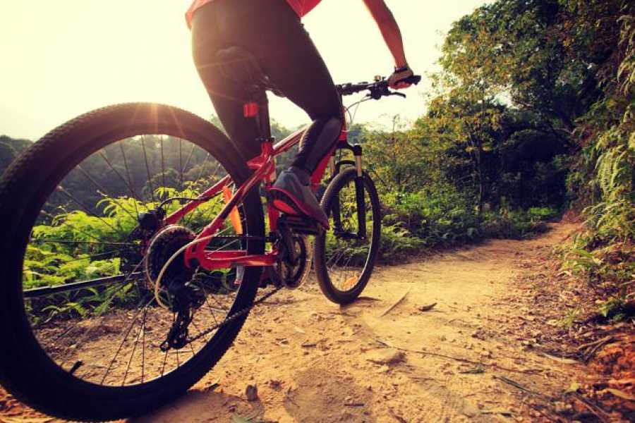 Tour Guanacaste Bike Rental in Guanacaste