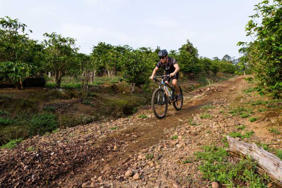 Tour Guanacaste On-Line Bike Rental