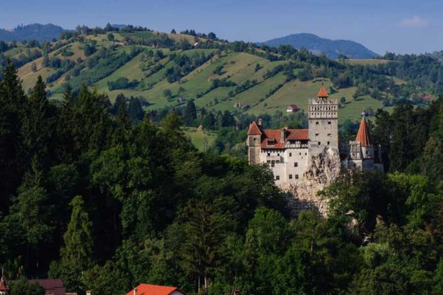 TravelMaker Full Day Trip to Peles & Bran (Dracula's) Castle - private - 12 hours