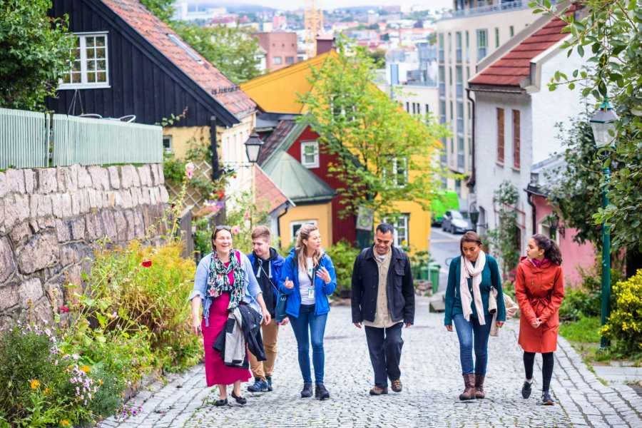 Viking Biking City Walk : Hipster Oslo