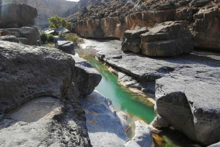 Absolute Adventure Wadi Damm