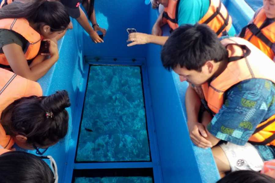 Green Island Tours - Easter Island Glass-bottom Boat Excursion