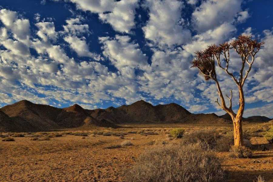 Toerboer Richtersveld Family Adventure