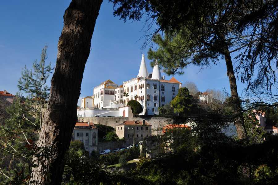 Discover Lisbon Sintra Tour