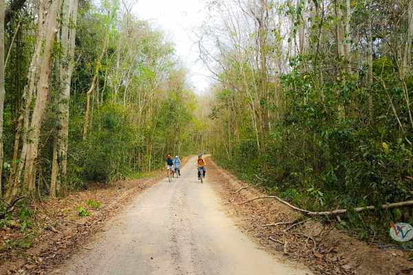 Viet Ventures Co., Ltd Trekking southern Vietnam 4 days