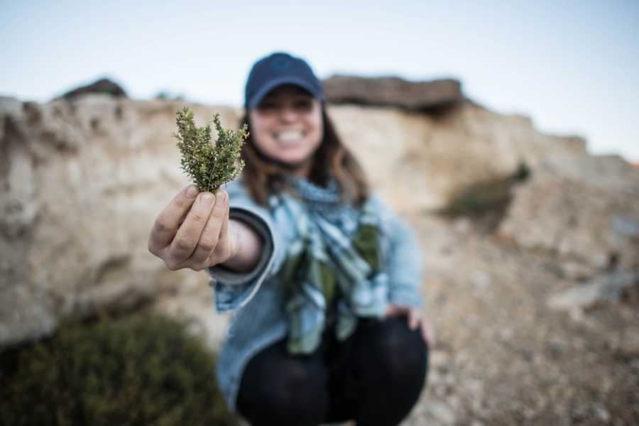 Desert-Pass Herbal Medicine Tour
