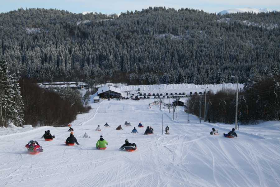 Molde Adventure Center Sledding