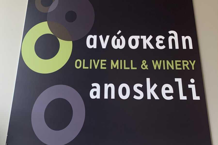 Destination Platanias Anoskeli Olive Oil & Wine Tasting
