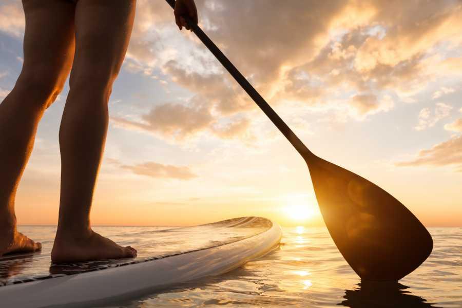 Kayak More Tomorrow Art Nouveau by Paddleboard