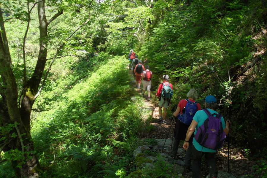 Evia Adventure Tours Trekking / Dimosaris Gorge