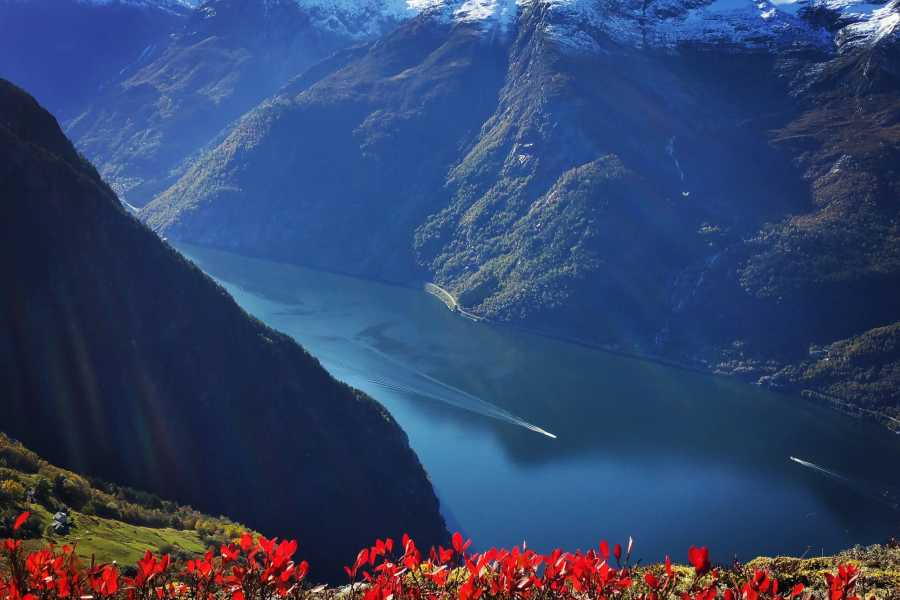 Stana Gard 2 Scenic Norwegian fjord experiance               with Trolltunga, kayacking, and Glacier-tour