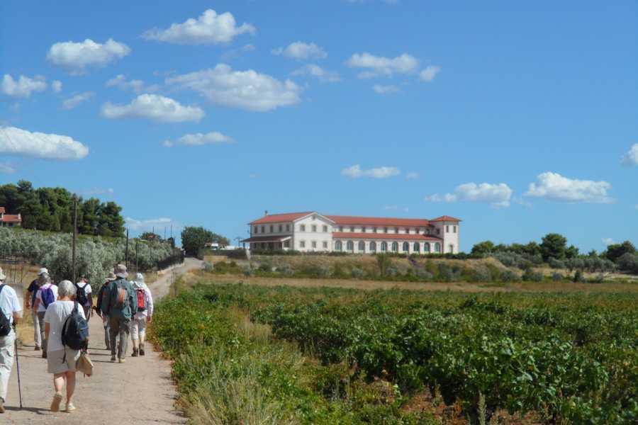 Evia Adventure Tours Hiking / Chalkis to Tzivani Winery