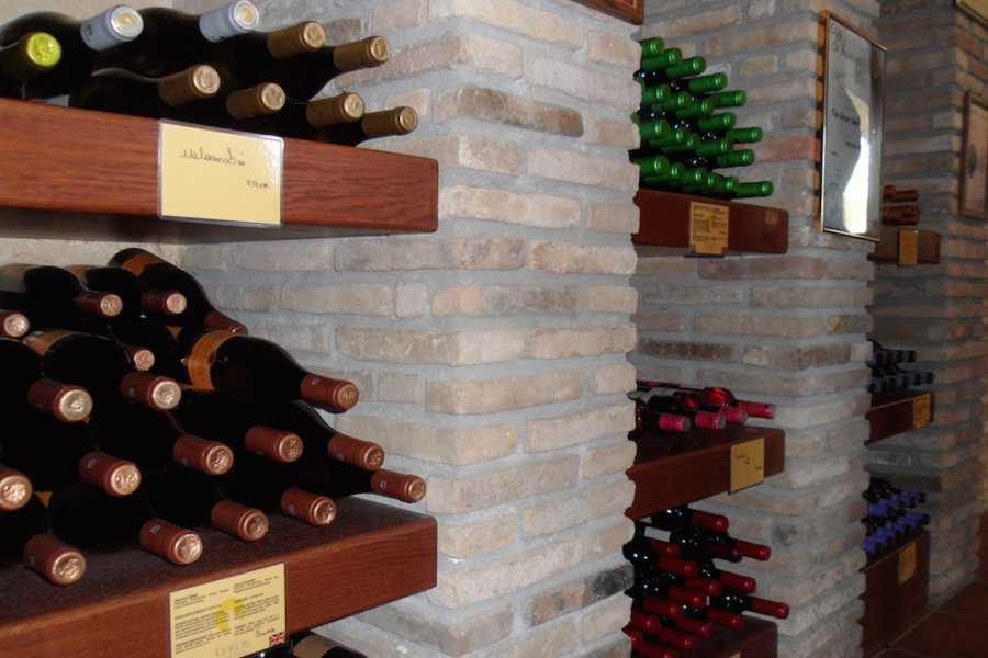 Evia Adventure Tours Wine Tour / The Vineyards of Central Evia