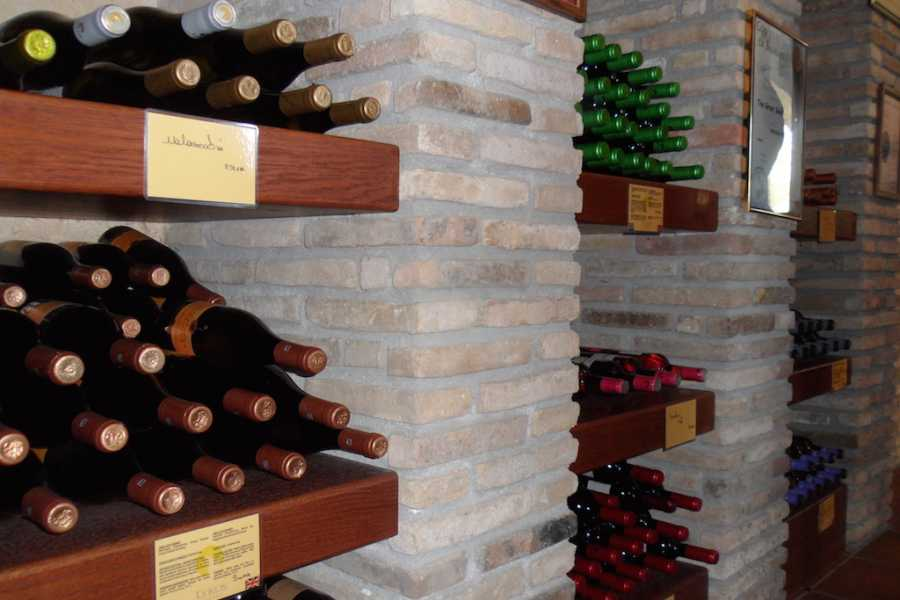 Evia Adventure Tours Wine Tour @ 2 Wineries / The Vineyards of Central Evia