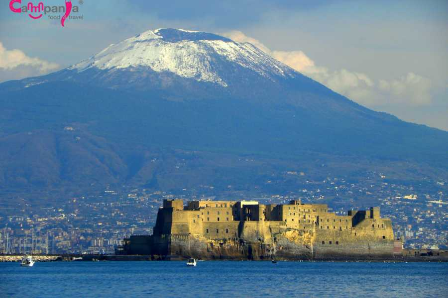 Campania Food & Travel Vesuvio Wine Tasting e Pompei Tour