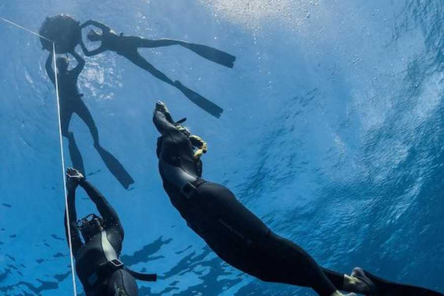 Coral divers PADI Freediver Course