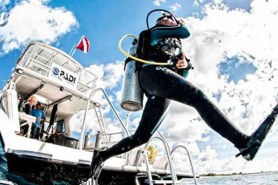 Coral divers PADI Boat Diver Specialty