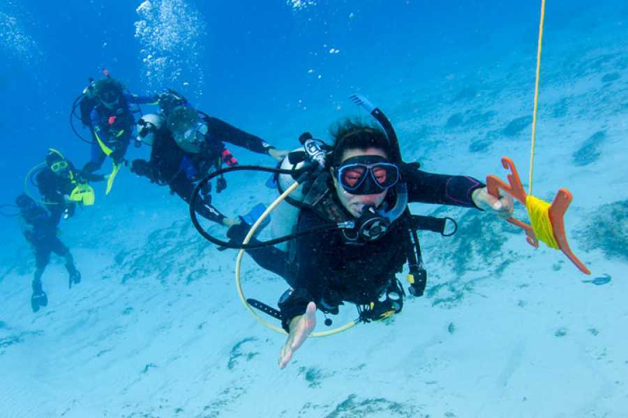 Coral divers PADI Drift Diver Specialty