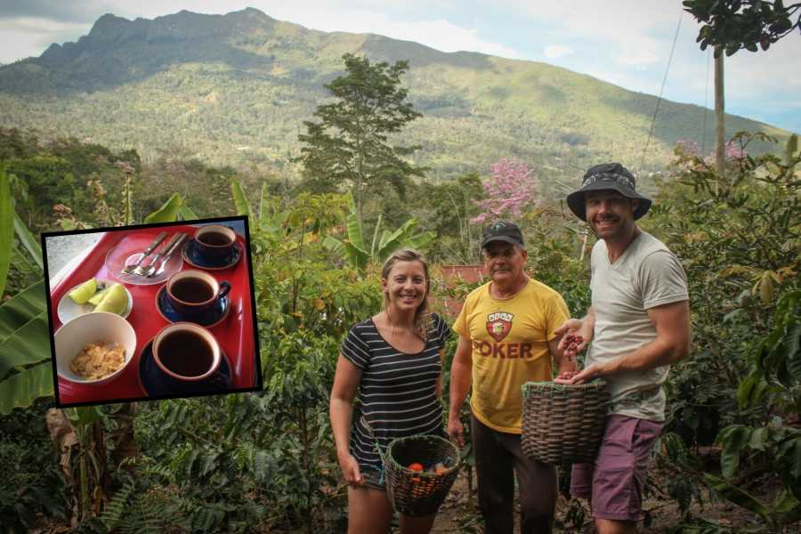 Andes Ecotours Traditional Bogotá Coffee Tour