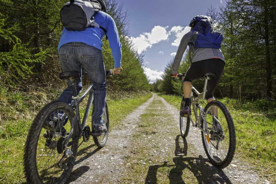 Cambria Tours Riverside Explorer - Self Guided