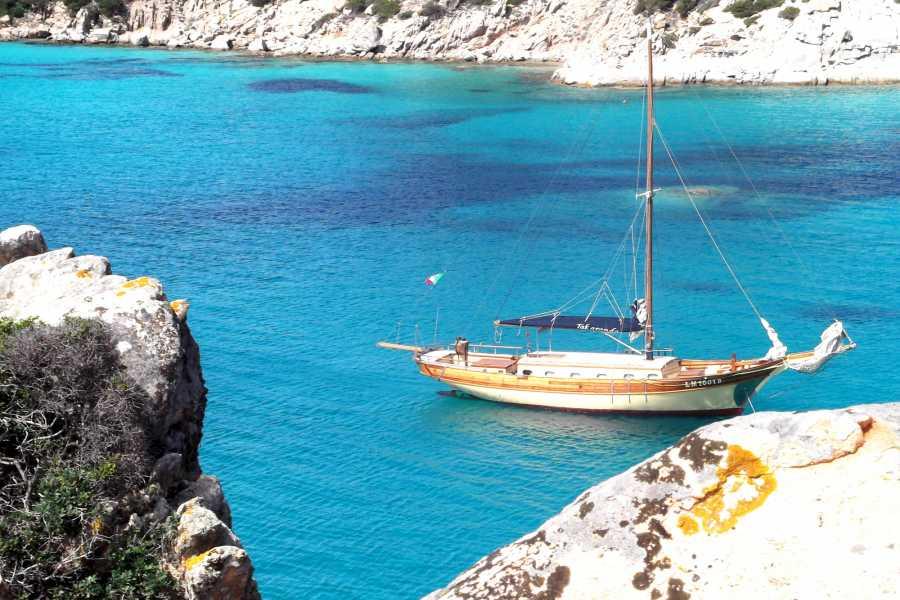 virginia motor yacht Veliero