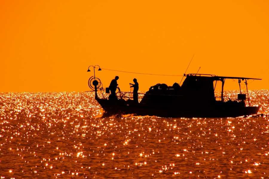 Italian Event Better FISHING DEMONSTRATION IN VENICE (for groups)