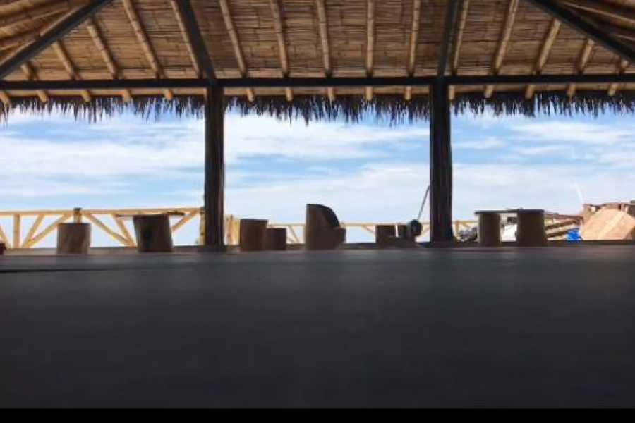 Go Montanita BJJ & Surf Camp