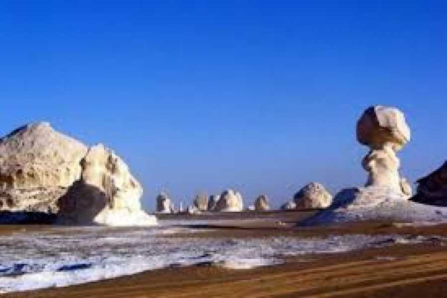 Marsa alam tours Reise nach Bahariya-Oase-White-Desert