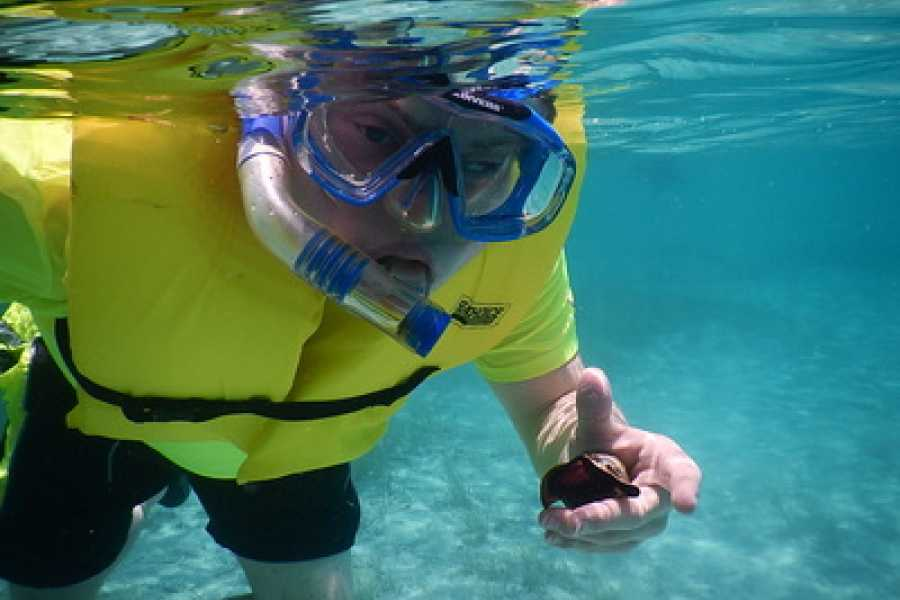 TheRealBahamas LLC Grand Bahama: Full Day: Stingrays, Snorkeling & Reef Fishing: West End Ecology Tour
