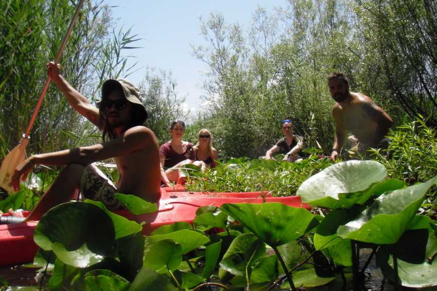 MH Travel Agency KAYAKING ON SKADAR LAKE