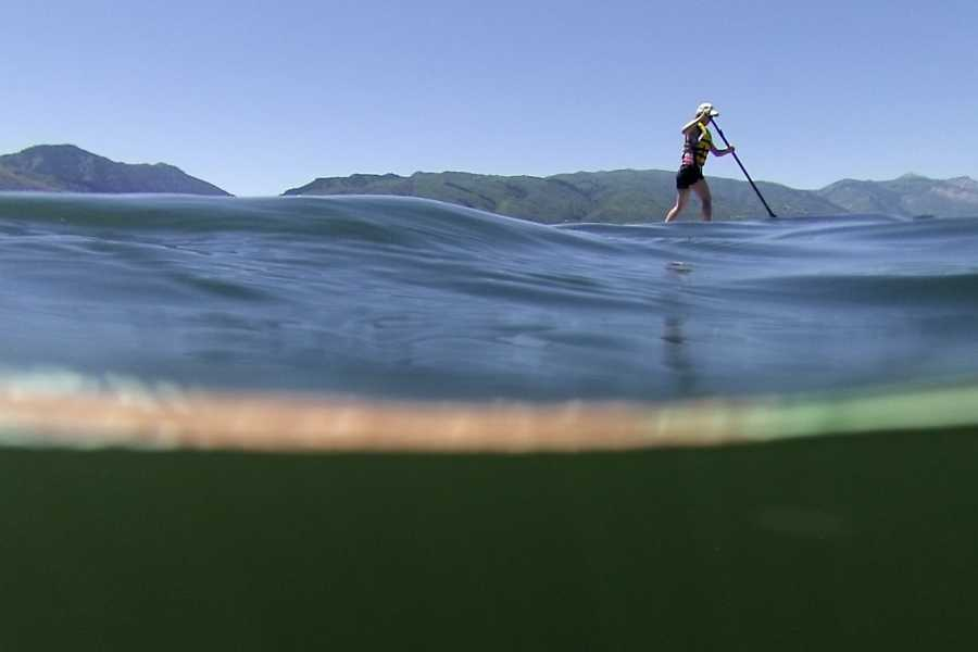 Molde Adventure Center Stand Up Paddle Board (SUP) in Molde