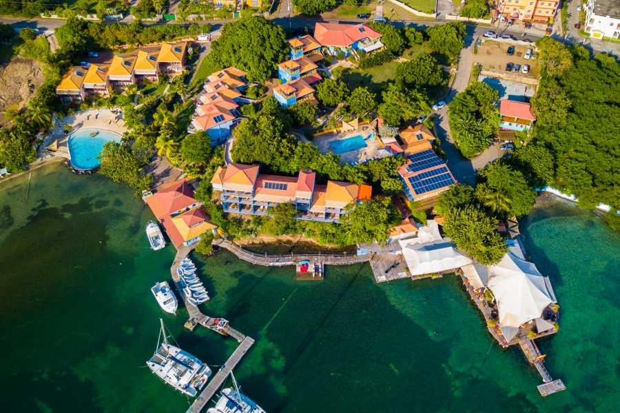 Aquanauts Grenada Dive with Delos | Grenada