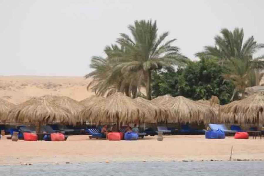 Excursies Egypte Excursion en apnée à la baie de Sharm el Naga depuis El Gouna