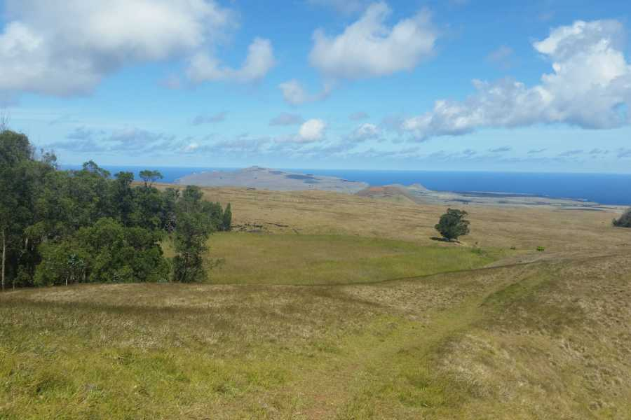 Green Island Tours - Easter Island Terevaka Summit Hike