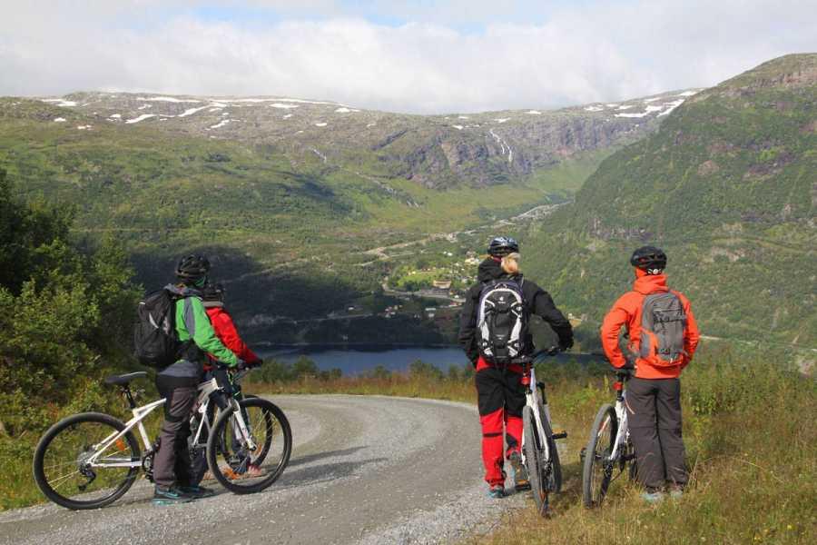Åkrafjorden Oppleving AS Rent a bike