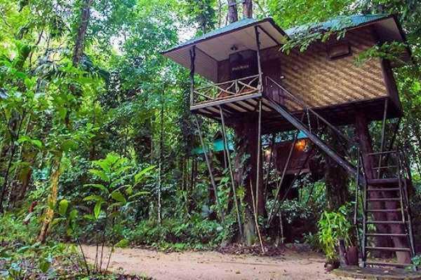 2 Days 1 Night in Khao Sok National Park - Thailand