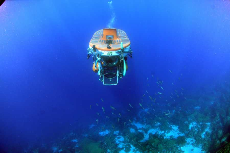 Blue Bay Dive & Watersports Adventure Dive Substation