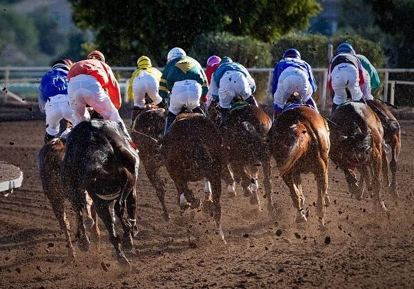 VIP Horse Racing