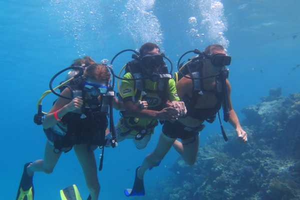 Excursies Egypte Diving trip Hurghada- Scuba diving from Makadi