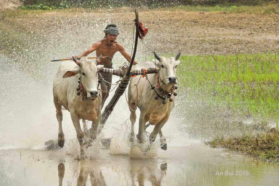 Viet Ventures Co., Ltd Photography Tour - Mekong Delta 3 days