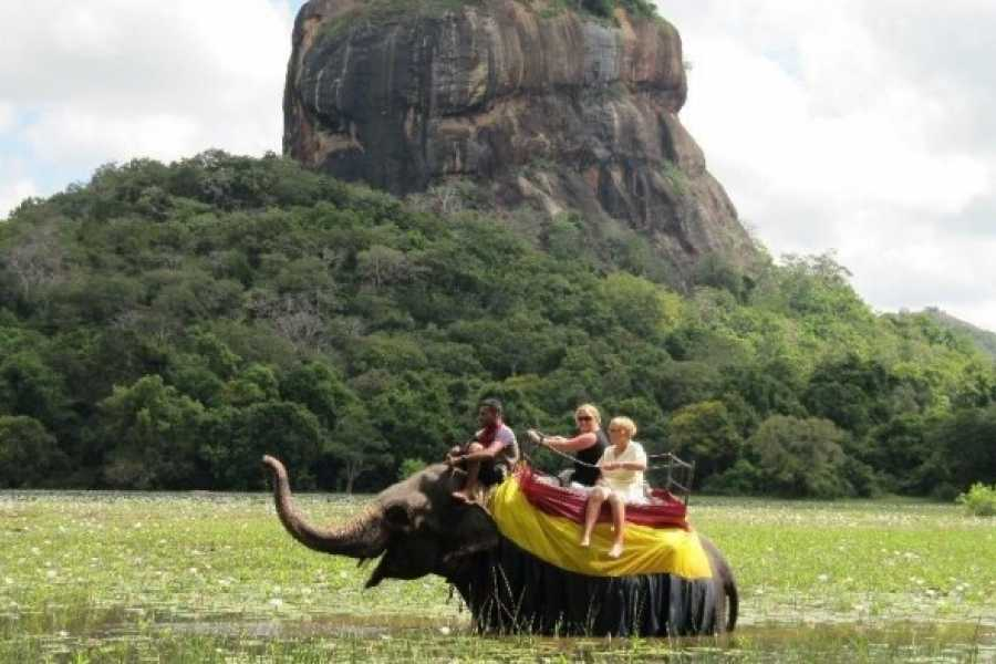 Walkbout International LLC Culture & History - Sri Lanka: Glory Of Sri Lanka - 13 Days/12 Nights