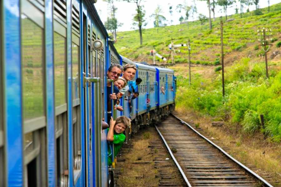 Walkbout International LLC Culture & History - Sri Lanka: Wonder Of Sri Lanka 10 Days / 09 Nights