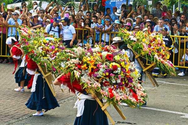 1/2 Day Medellin Culture Tour