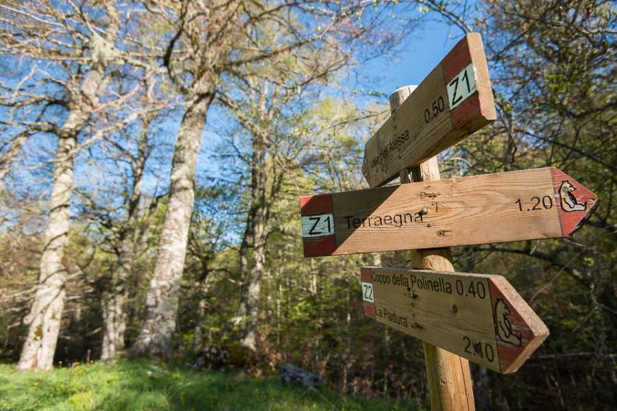 Wildlife Adventures La valle di Terraegna e le foreste patrimonio UNESCO