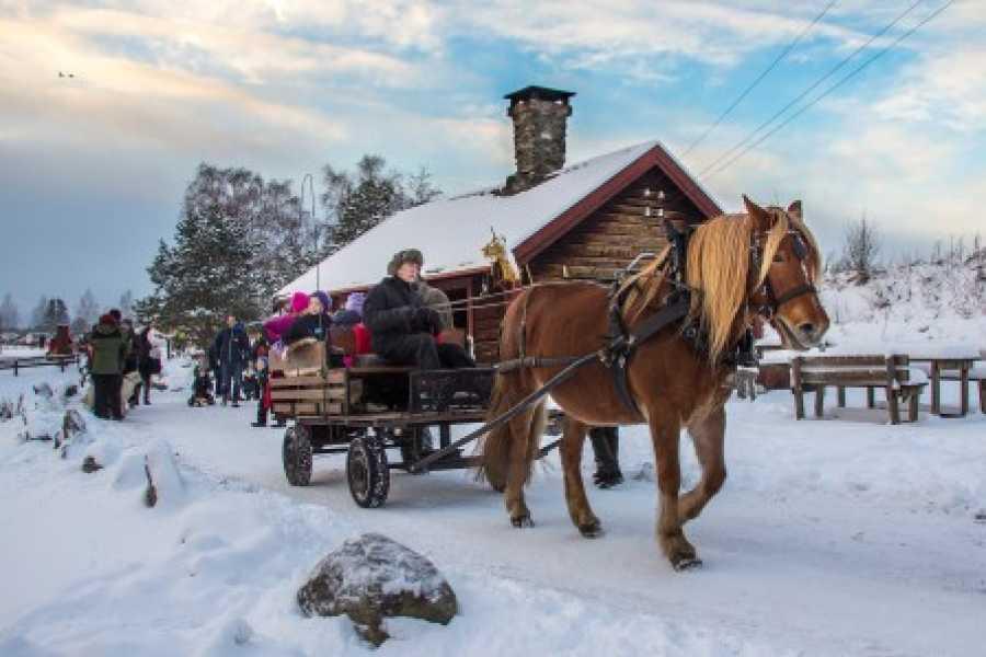 Visit Innherred Jul igjen på Stiklestad