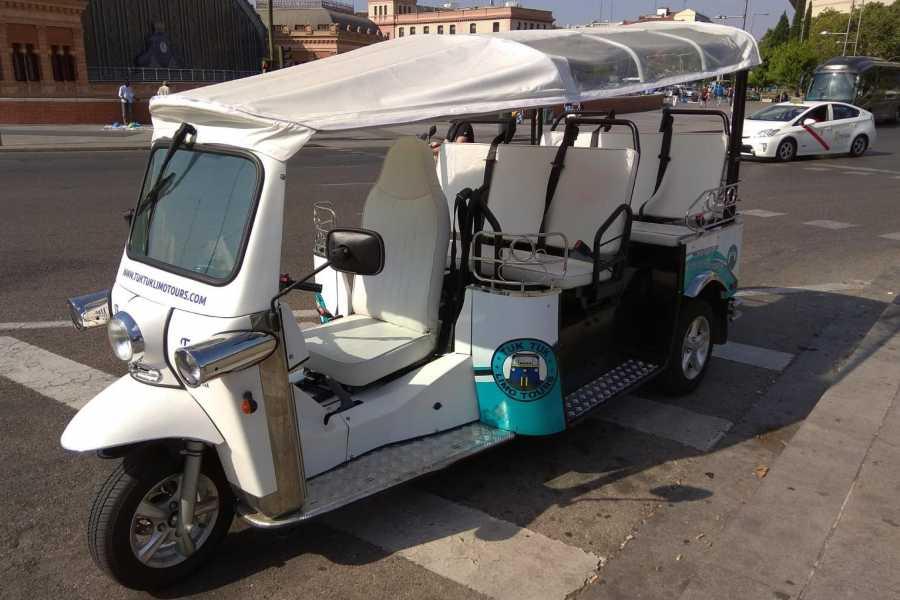 Urban Safari Tours Tuk Tuk: La Latina Tour