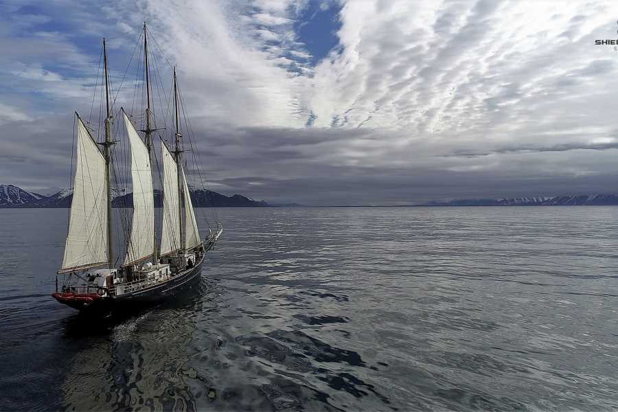 Maybe Sailing International Tall Ship Races 2019. Race 2.  Blue Clipper