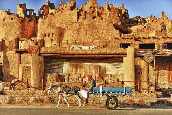 Deluxe Travel Cairo Baharia Siwa Safari Tour